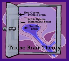 Triune Brain shown through an open doorway