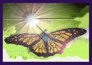 How do you know when you've finished healing butterfly into the Light
