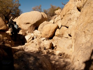 Climbing up into the rocks in Joshua Tree National Park, California, USA