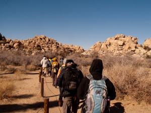 Starting down the trail in Joshua Tree National Park, California, USA