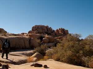 The trail levels off in Joshua Tree National Park, California, USA